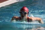 """Die zehnjährige Anne Lämmerzahl holte sich als Schwimmerin der SG Lauf drei Goldmedaillen beim 12. Goldsprinterpokal in Schwabach, hier auf ihrer """"Paradestrecke"""", den 50m Schmetterling"""